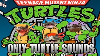 Baixar Teenage Mutant Ninja Turtles main theme but it's made with only turtle sounds