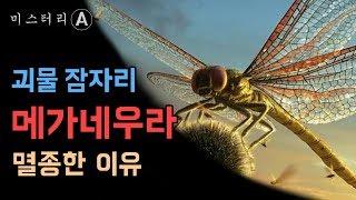 초 거대 잠자리가 멸종한 이유 (Feat.곤충의 탄생) / 메가네우라
