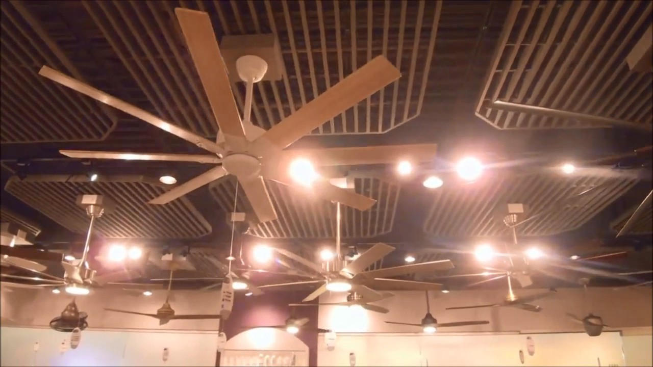 Sneak K Of Fanimation Ceiling Fans At The Dallas Lighting Show Part 4