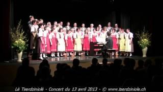20130413 - Concert Lè Tserdziniolè - Le Moteur à explosion