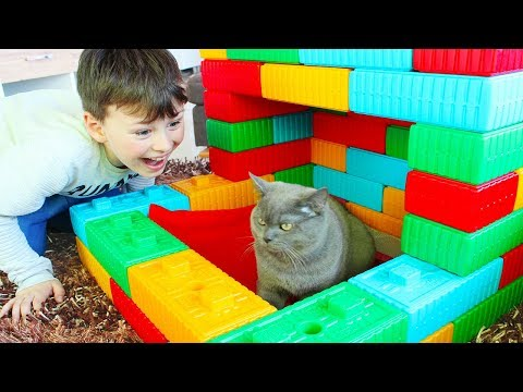 Ali made Toy House for his cat Pretend Play Fun Kid video