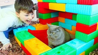 Ali made Toy House for his cat Fun Kid video