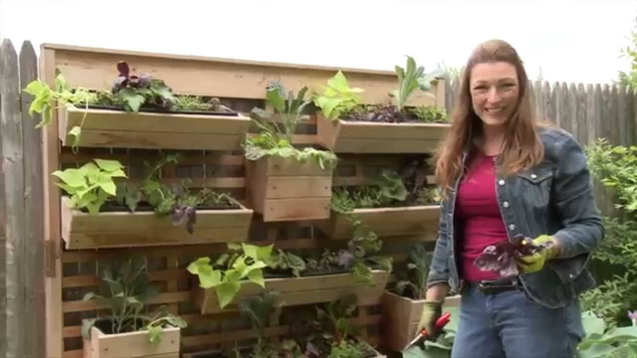Living & Garden how to plant a living wall garden on a fence - youtube