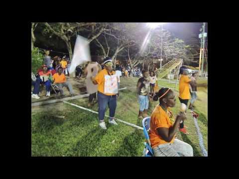 FUN!!!! @ Cricket For Charity w Cita 90.1 FM Barbados .July 2015