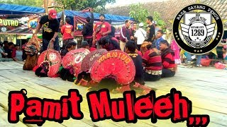 Terbaru LAGU PAMIT MULIH _ JARANAN ROGO SAMBOYO PUTRO TERBARU LIVE JOMBANG