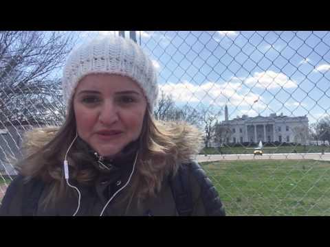 Amerikalılar Donald Trampın siyasətini təhlil edir -  musavat.com Vaşinqtonda sorğu keçirdi