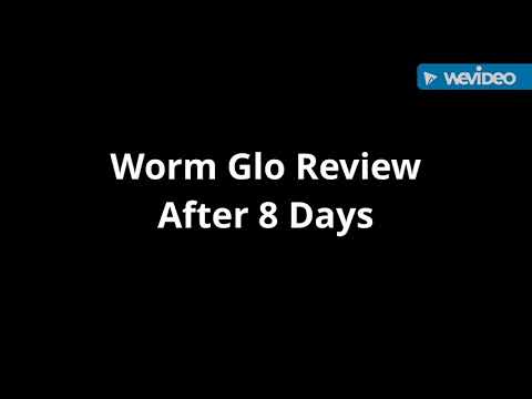 Worm Glo Review After 8 Day's