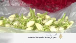 """""""مشموم الفل والياسمين"""" زراعة رائجة في تستور التونسية"""