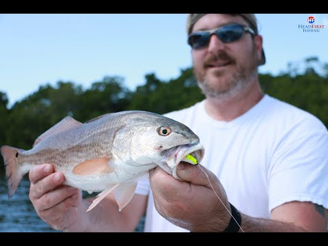 March Tampa Bay Fishing Report - Tides And Fish Behavior