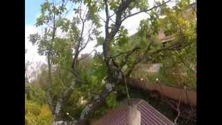 Обрезка деревьев.(Обрезка деревьев Удаление деревьев, обрезка деревьев, свалить дерево, кронирование деревьев, валка деревье..., 2012-09-29T21:06:07.000Z)