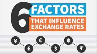 What Influences Exchange Rates?