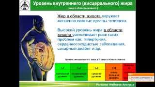 Wellness TEST (ранняя версия)