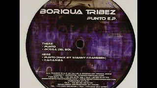 Boriqua Tribez - Punto ( Stanny Franssen Remix )