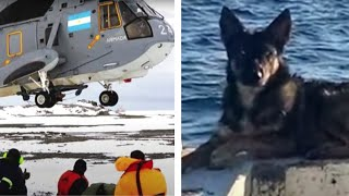 People and Animals Who Were Stranded on Islands