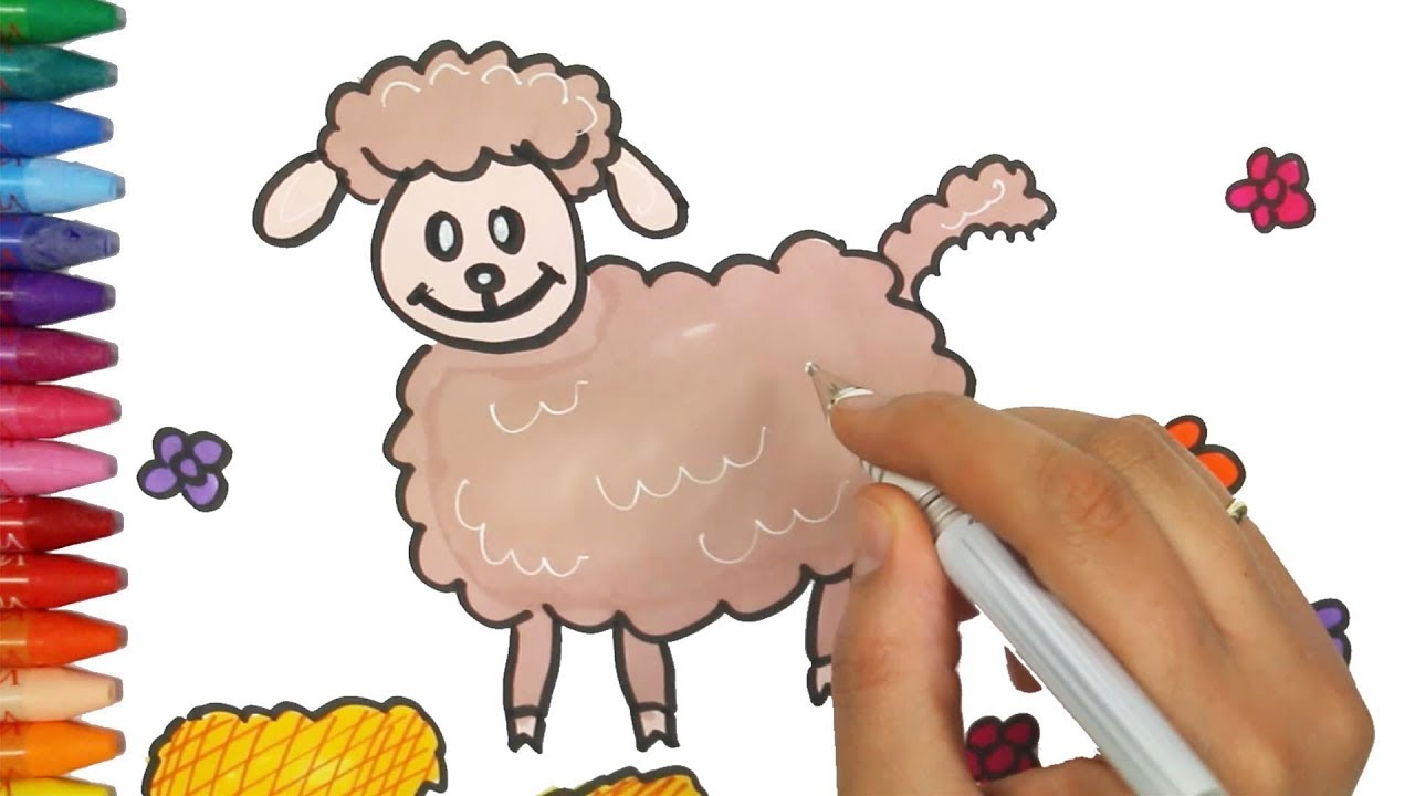 how to draw a lamb how to draw and color kids tv kids learning