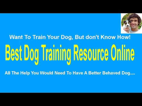 stop-dog-barking---how-to-stop-your-dog-barking-in-the-garden-or-else-where