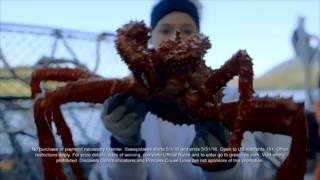 Great Clips + Deadliest Catch Alaskan Cruise Adventure