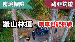 密境探險~新竹羅山林道野營,柴燒Pizza,只靠睡袋度過刮風下雨,頭前溪首釣,這次撿不到垃圾