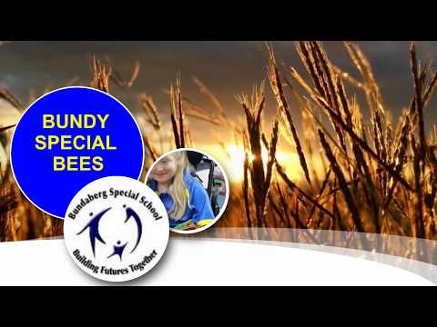 Bundy Special Bees by Phoebe Jay