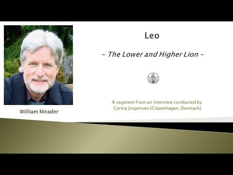 Leo The Lower and Higher Lions