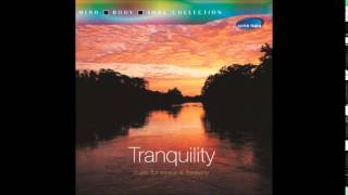 Mountain Magic Radio Edit - Tranquility (Abhijit Pohankar)