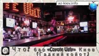 """Бар """"Гадкий койот""""(Coyote Ugly) Киев"""