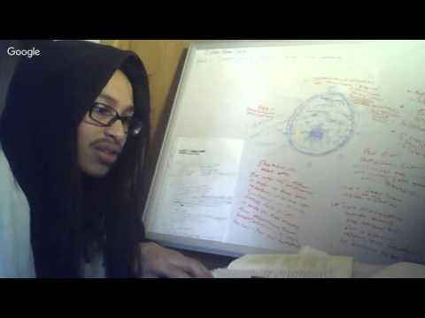 Metaphysical Understanding of Melanin