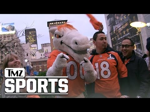 Miles the Broncos Mascot: Peyton Will Retire If We Win the Super Bowl!! | TMZ Sports