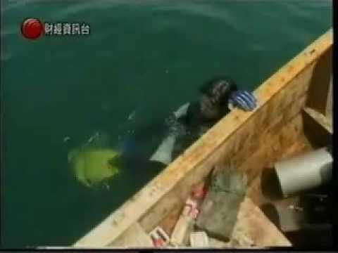PSAI China 2009 Diving at Qiandaohu by Cable TV Part 3