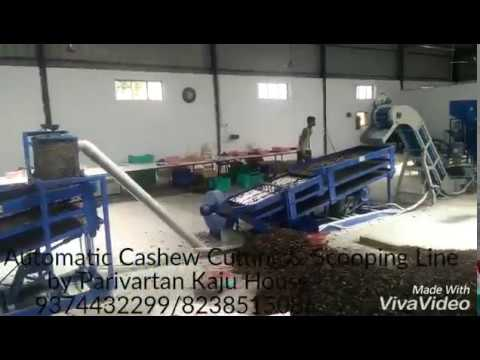Automatic Cashew Cutting &  Scooping Line By Parivartan Kaju House, Surat