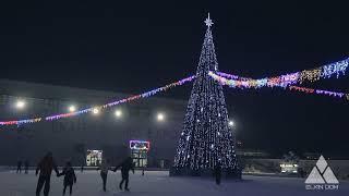 Большая уличная Ель. Ёлкин Дом | Big outdoor Christmas tree. Elkin Dom