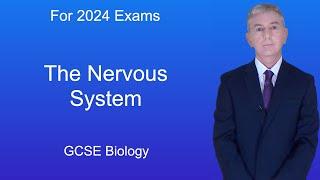 GCSE Science Biology (91) The Nervous System