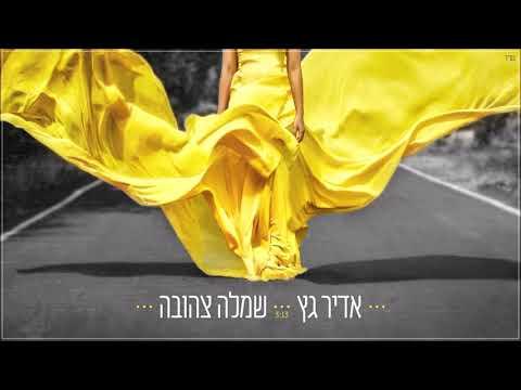 אדיר גץ - שמלה צהובה Adir Getz