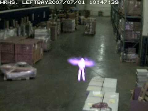 Real Fairy in Warehouse, Memphis, TN