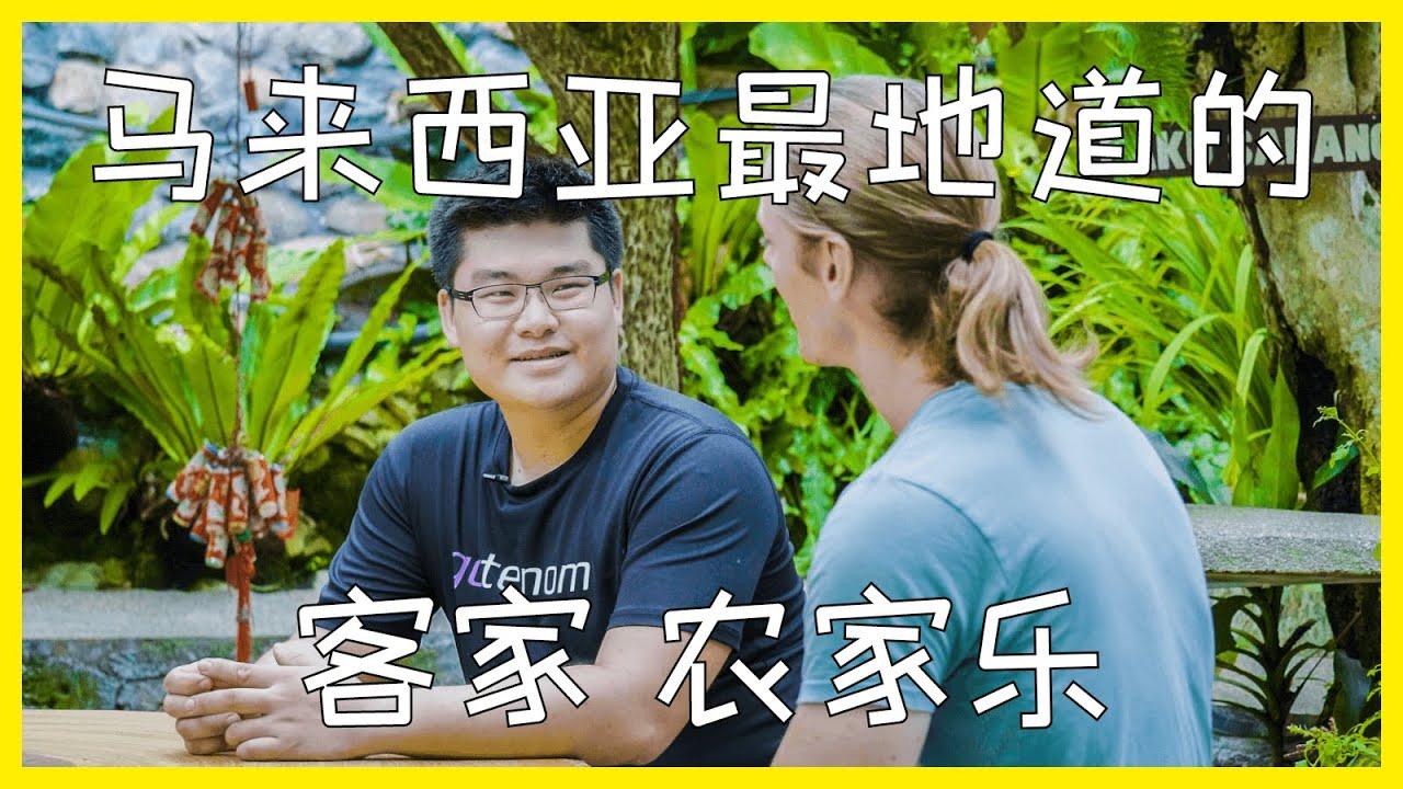 跟随小维探员体验马来西亚最地道的农家乐~杨家村~丨【探透】第一季 22期