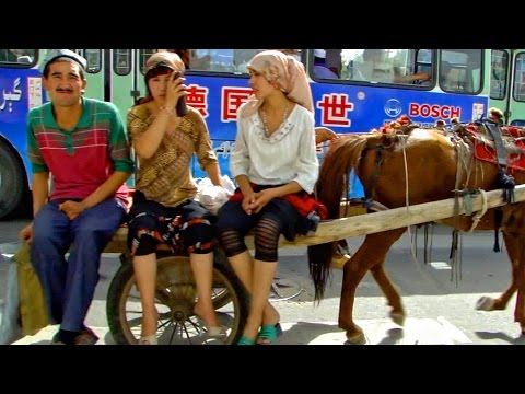 新疆和田維吾爾毛驢車 Uygur Donkey cart in Hotan Xinjiang (China)