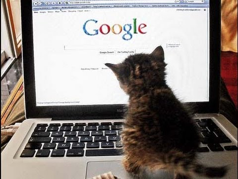 12 Surprising Facts About Google