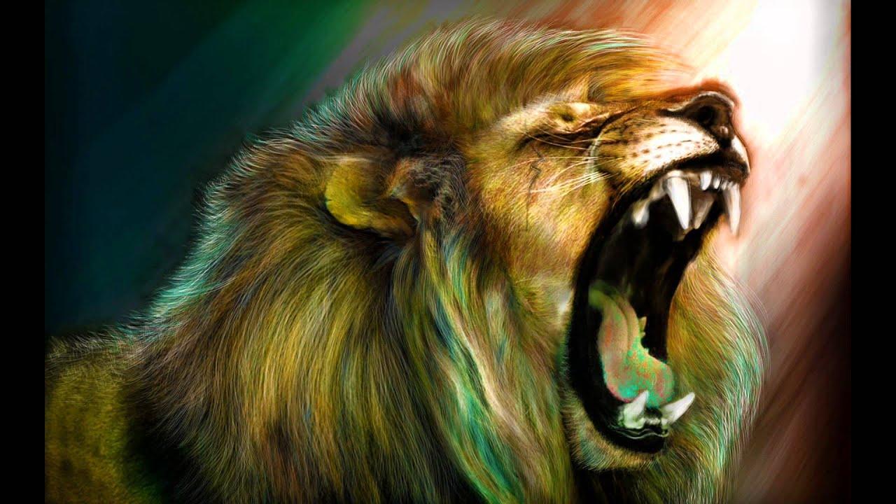 Ras Muhamad - Lion Roar - YouTube - photo#5