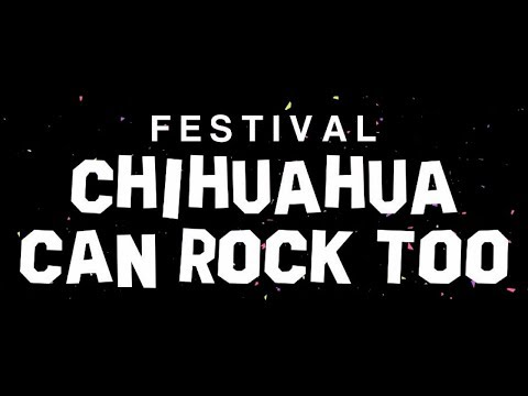 The Ingrata Mexican Band - Festival Chihuahua Can Rock Too