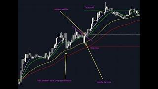 Plano de Trading para começar no Forex da XM ou IQ Option (estratégia)