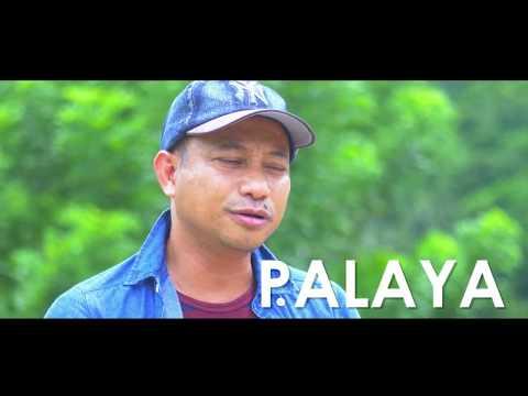 Palaya Natural Farm Video