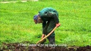 SØSKEN TIL EVIG TID_Teaser30sek