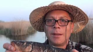 калмыкия часть 2 з классных дня на рыбалке