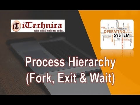 2. Process Hierarchy: Fork, Exit & Wait System Calls