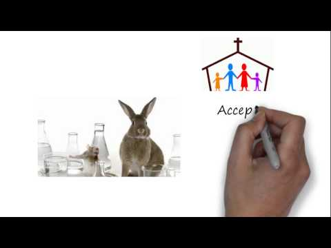 Medical Ethics – Christian attitudes towards the use of animals in medical research