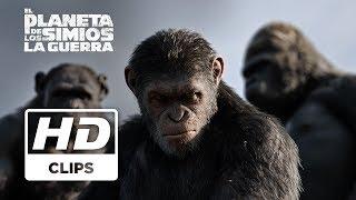 El Planeta de los Simios: La Guerra | Clip Creando una realidad | Próximamente - Solo en cines