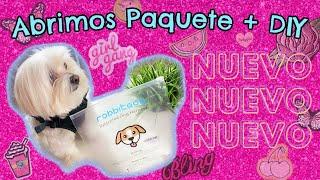 Arnes anti tirones RABBITGOO, DIY, Nuevo Look, Coton de Tulear I Lorentix