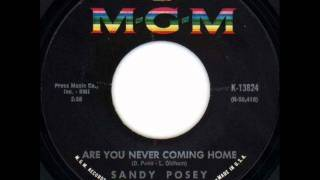 Sandy Posey - Are You Never Coming Home, Mono 1967 MGM 45 record.