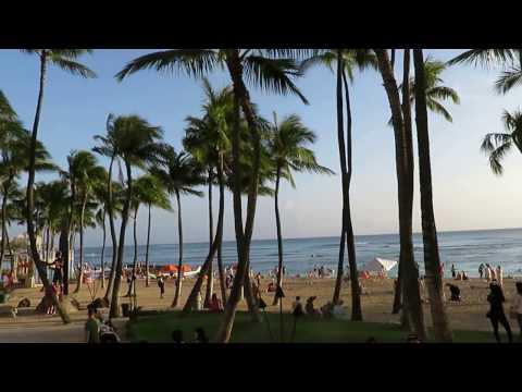 waikiki trolley pink line waikiki beach kuhio kalakaua hawaii honolulu 20170324 1