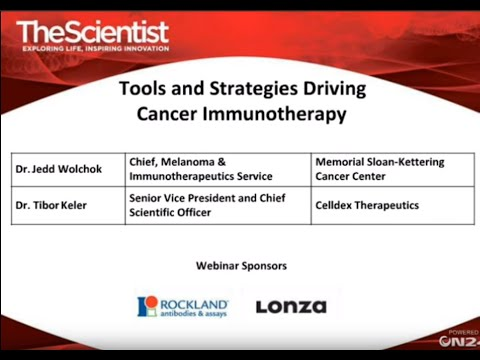 Tools and Strategies Driving Cancer Immunotherapy